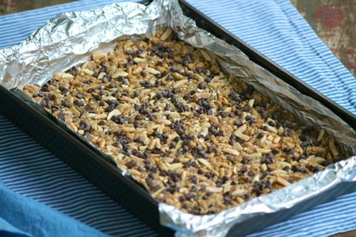 Chocolate Chip Oat Bar