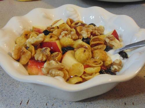 Fruit and Nut Yogurt